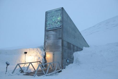Всемирное семенохранилище на Шпицбергене − тоннель-хранилище, в который помещаются для безопасного хранения образцы семян основных сельскохозяйственных культур