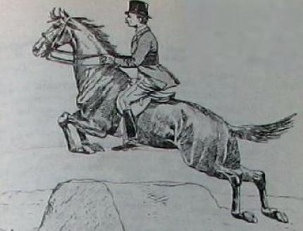 «Основы выездки и езды» Джеймса Филлиса
